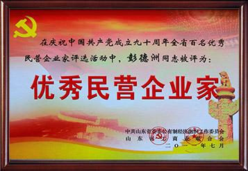 2011年山东省优秀民营企业家