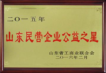 2015年山东民营企业公益之星
